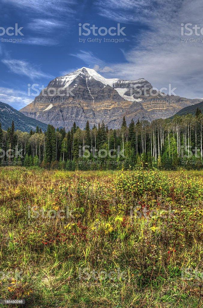 Mount Robson stock photo