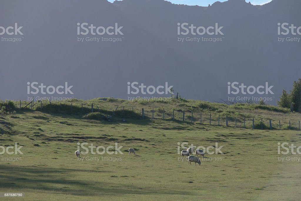 Mount roland Promised Land tasmania stock photo
