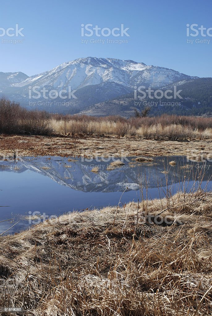 Mount Rose Reflection royalty-free stock photo