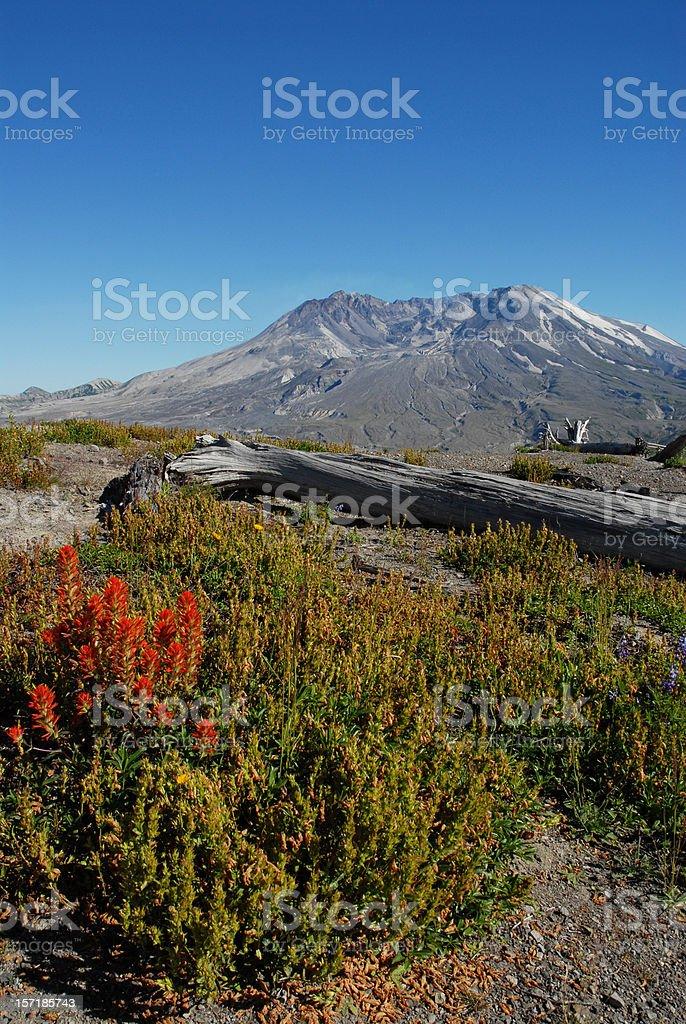 Mount Saint Helens Volcano stock photo