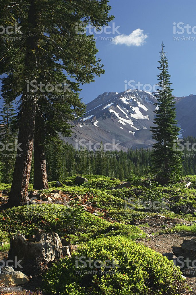 Mount Shasta Mountain View stock photo