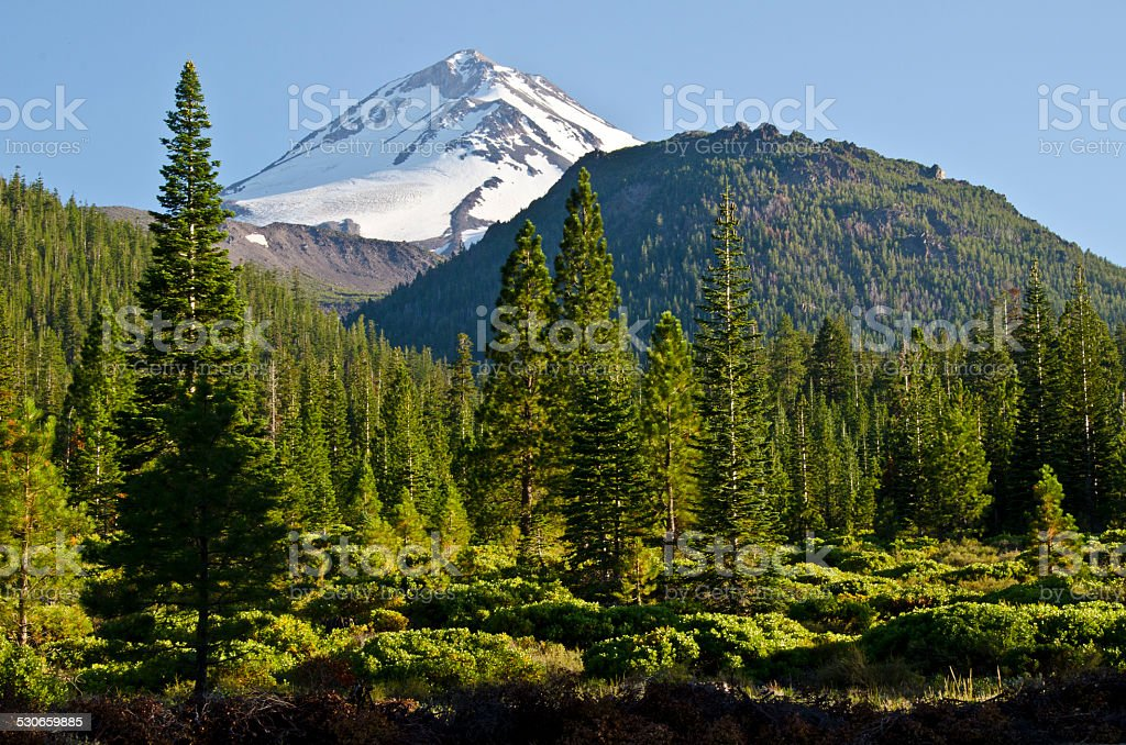 Mount Shasta Northside Summer stock photo