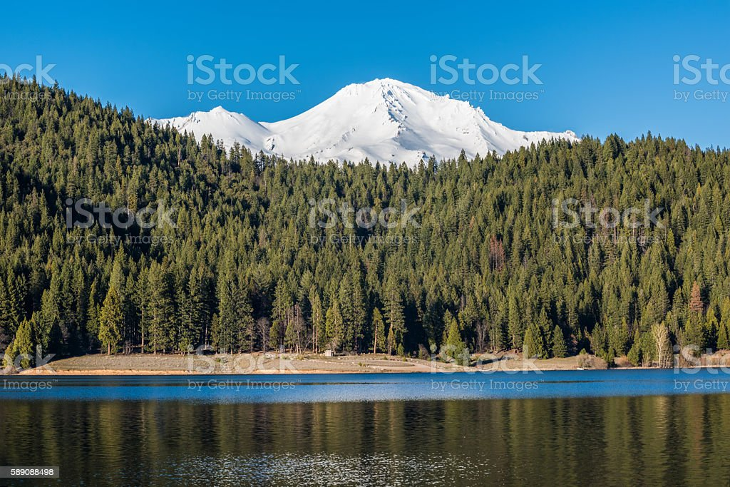 Mount Shasta peaks with Alpine Forest by Siskiyou lake stock photo