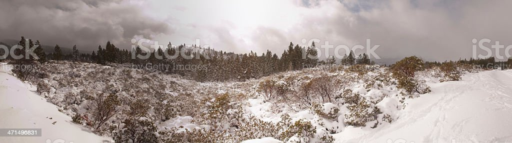 Mount Shasta Snowstorm royalty-free stock photo