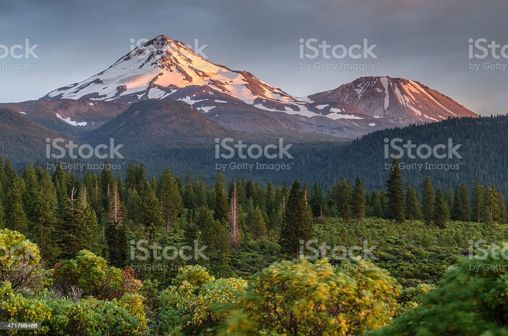 Mount Shasta summer stock photo