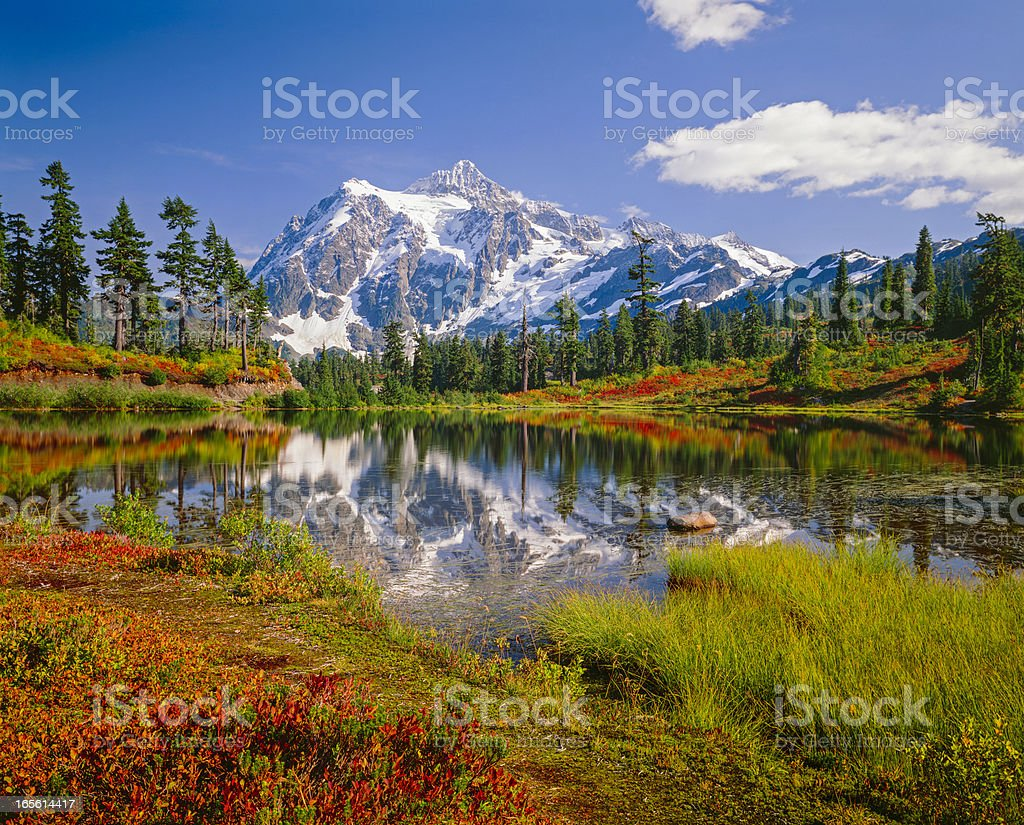 Mount Shuksan, Picture Lake, snowcapped mountain, autumn colored brush stock photo