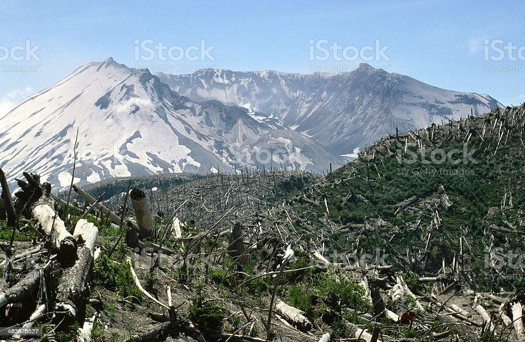 Mount St Helens 1988 Devastation Trees Crater Dome Reforestation stock photo