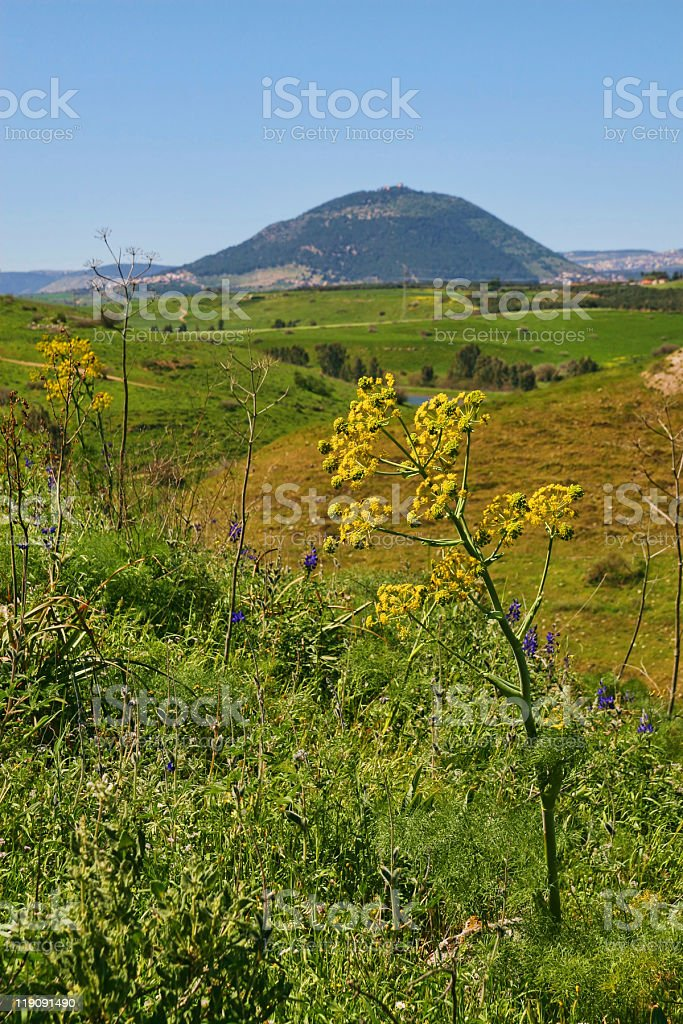 Mount Tavor, Israel stock photo