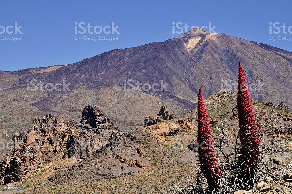 Mount Teide at Canary islands stock photo