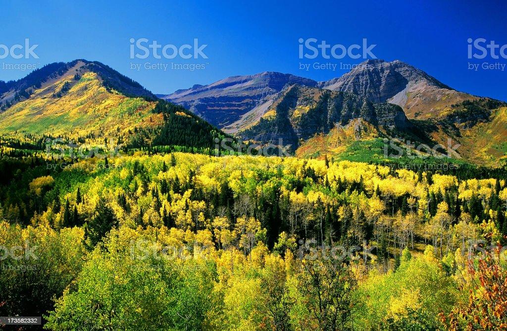 Mount Timpanogos royalty-free stock photo