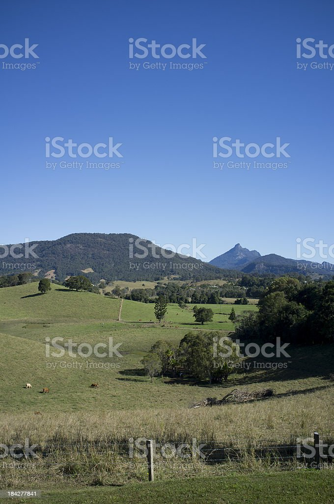 Mount Warning Countryside stock photo
