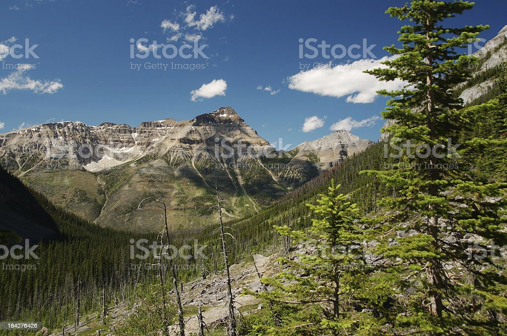Mount Whymper from Stanley Glacier moraine stock photo