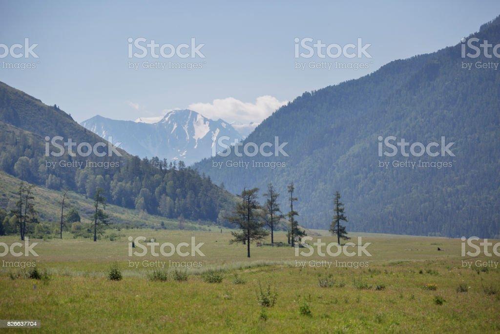 Mountain Altai landscape, Russia stock photo