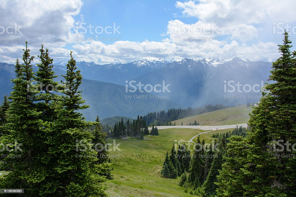 Mountain and forest in the Olympic National Park, Washington USA stock photo