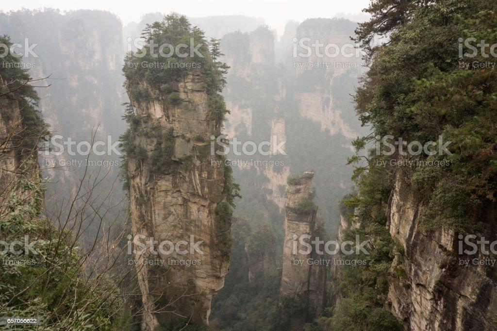 Mountain and forest in Zhangjiajie stock photo