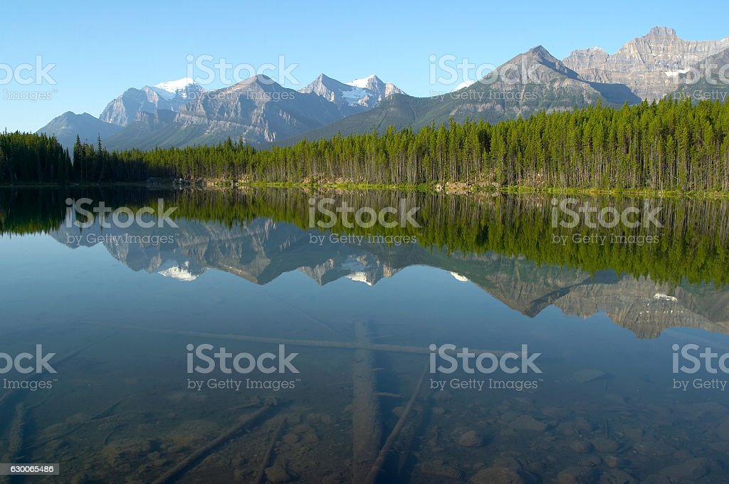 Mountain and forest Reflection in Mirror crystalline Lake stock photo