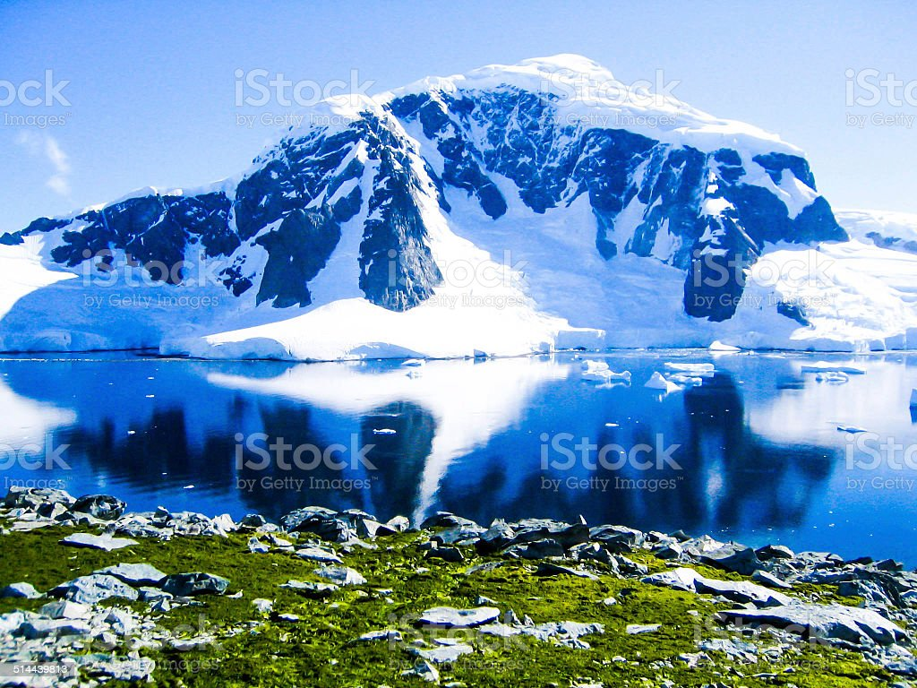 Mountain and Grass in Antartica stock photo