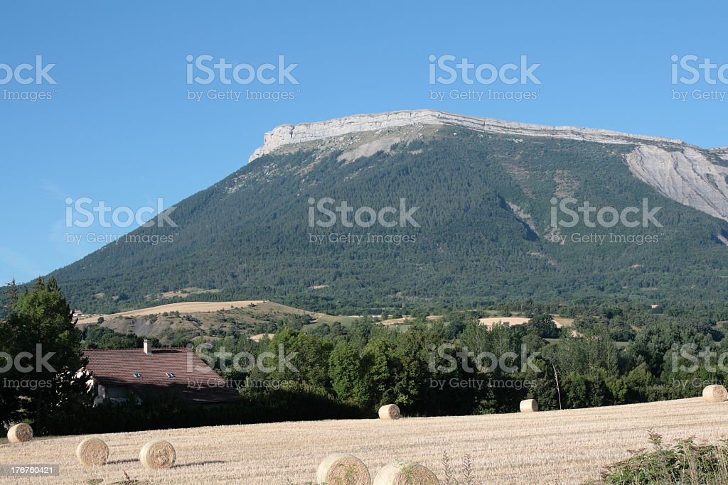 Mountain and hay in Alps stock photo