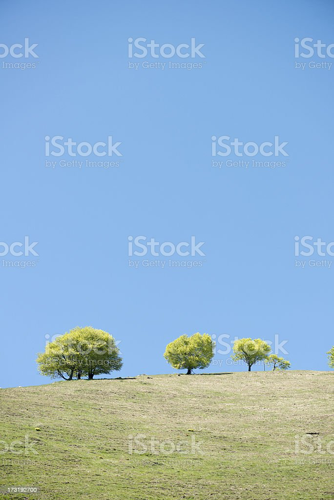 Mountain and hill landscape in Italian Alps royalty-free stock photo