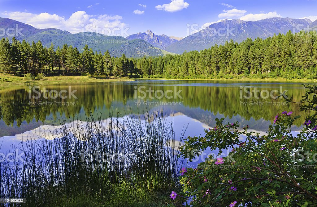 mountain and lake, Kootenay National Park royalty-free stock photo