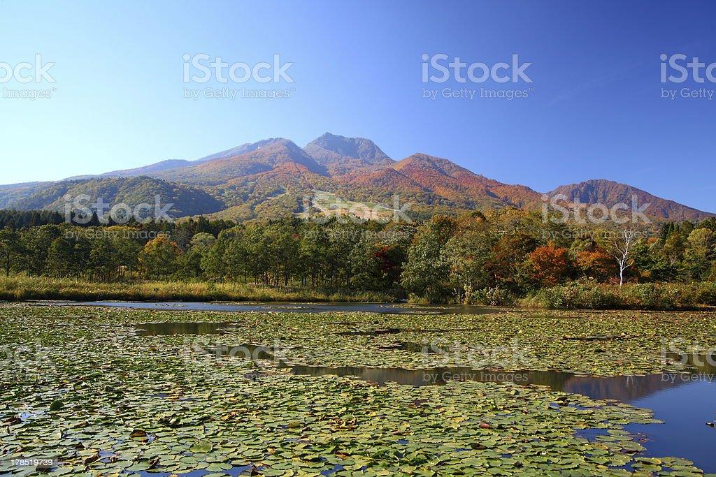Mountain and lotus pond royalty-free stock photo