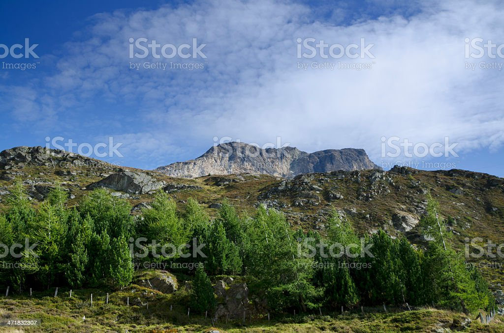 Mountain and trees stock photo