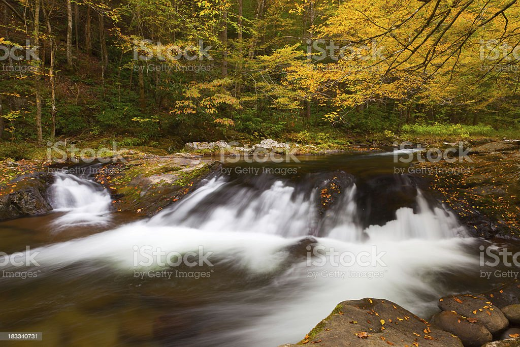 Mountain Autumn Stream royalty-free stock photo