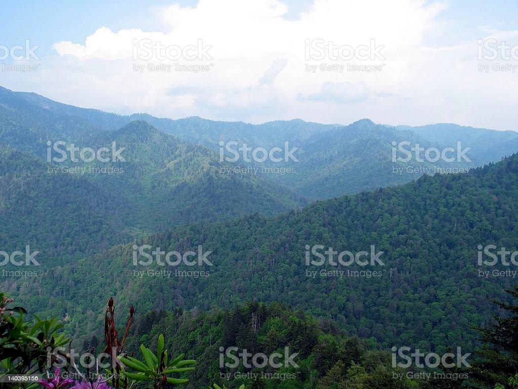 Mountain Beauty royalty-free stock photo