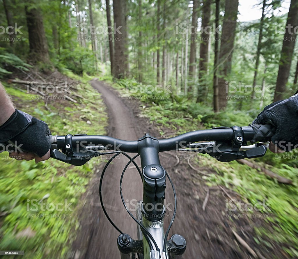 Mountain Bike Action Personal Perspective royalty-free stock photo