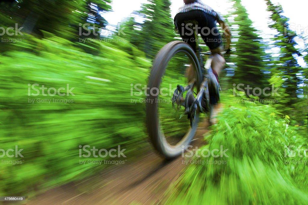 Mountain Bike Blur stock photo