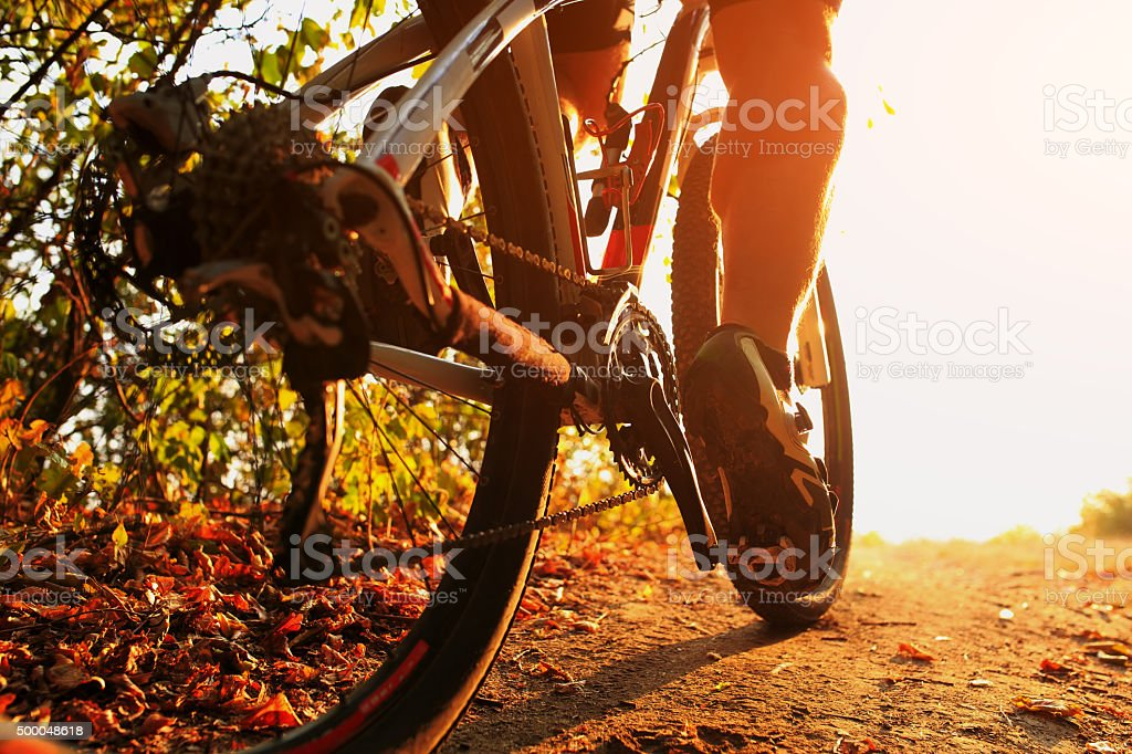 Mountain Bike cyclist riding single track outdoor stock photo