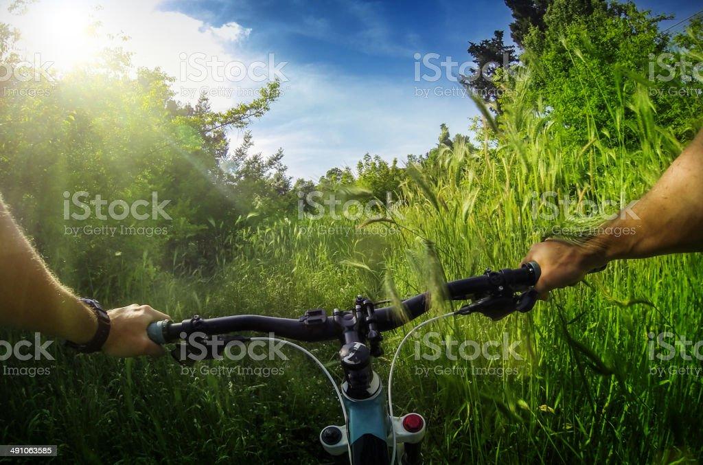 Mountain Bike: immersed in wild nature stock photo