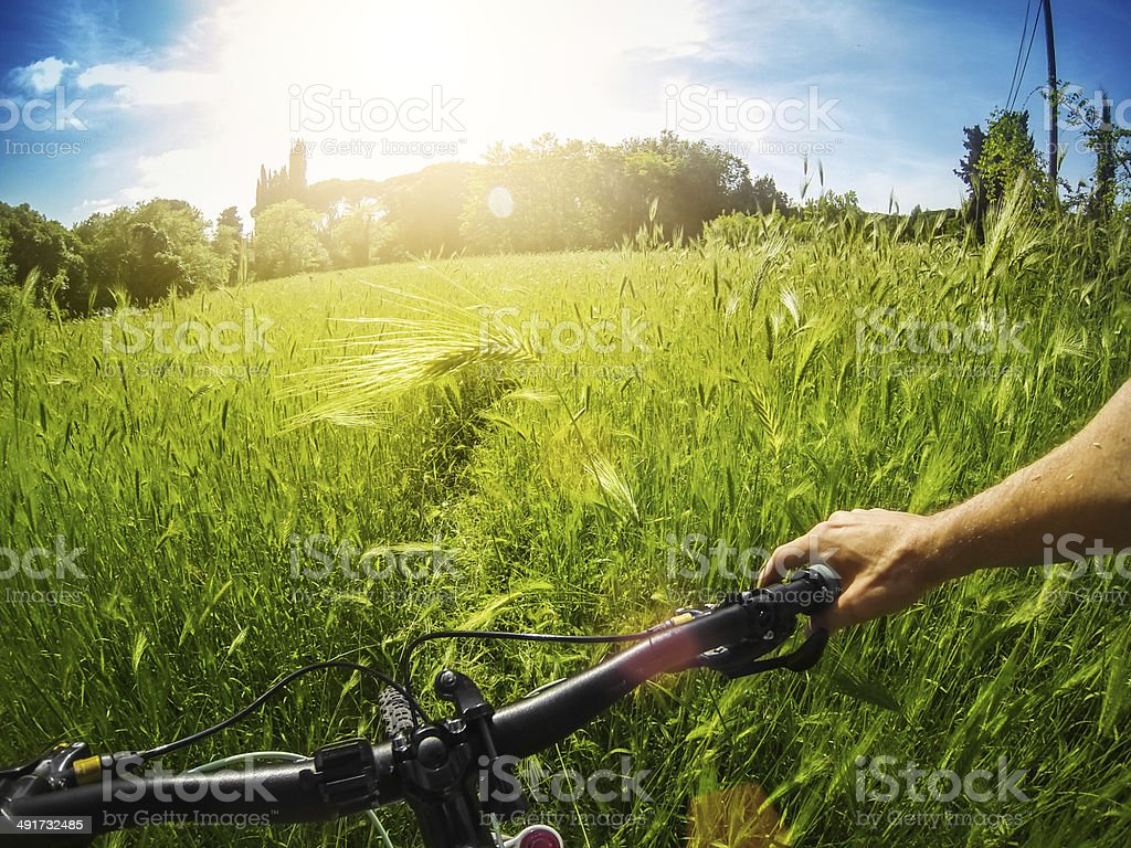 Mountain Bike: immersed in wild nature royalty-free stock photo