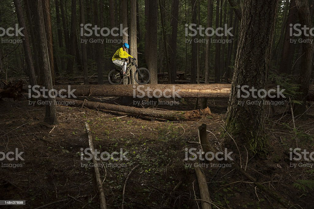 Mountain bike log ride royalty-free stock photo