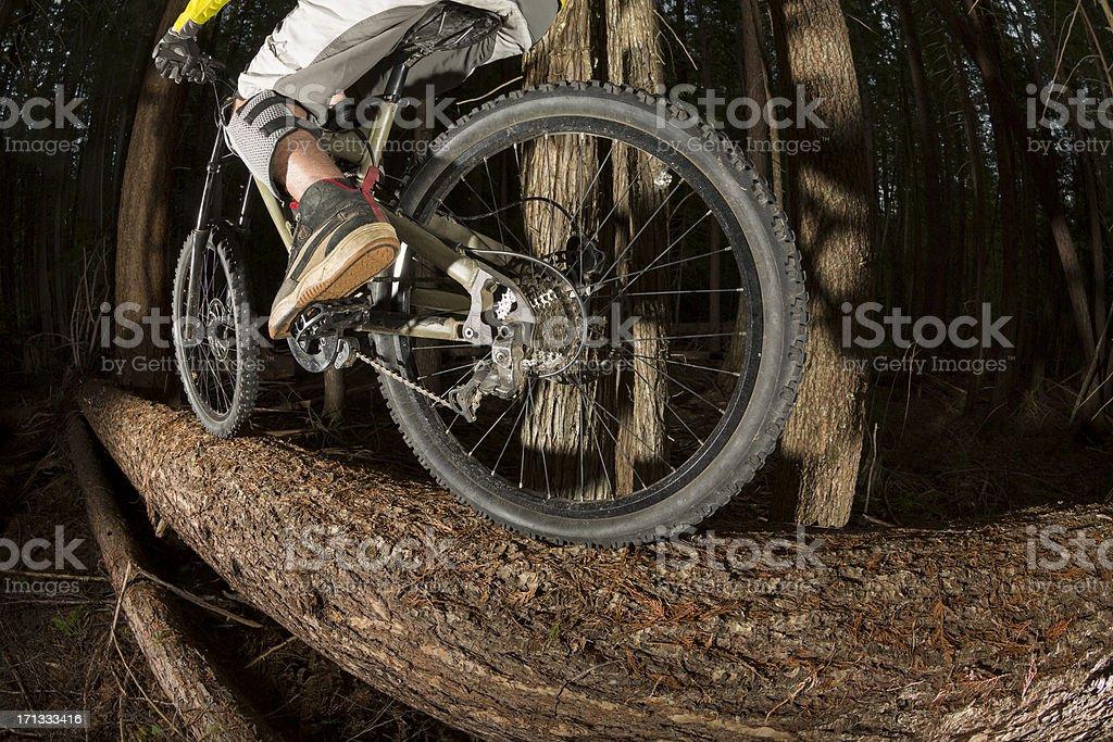 Mountain bike log ride royalty-free stock photo