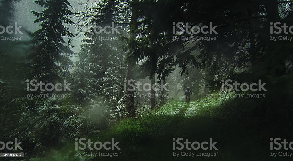 Mountain bike ride in the woods stock photo