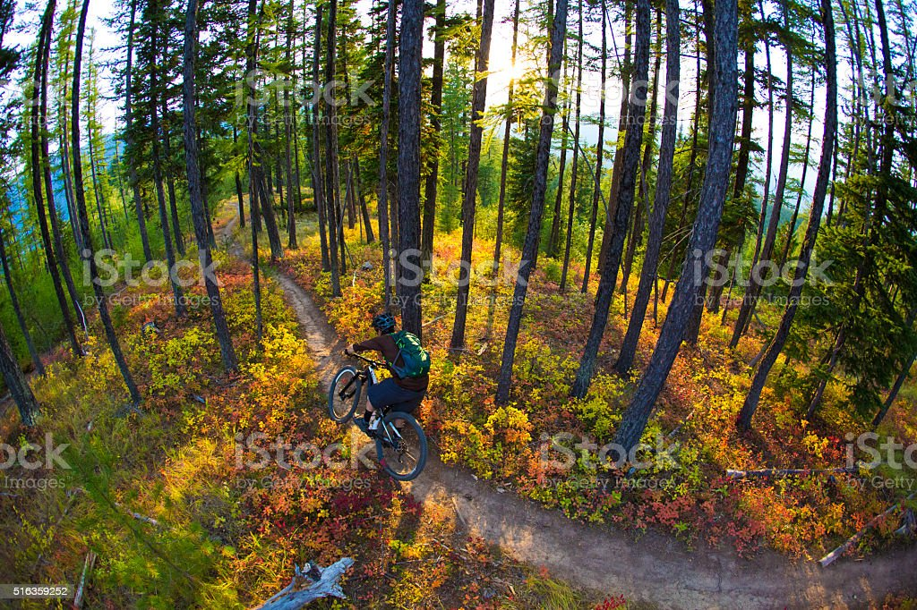 Mountain Bike Rider stock photo