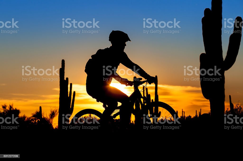 Mountain Bike Sunset stock photo