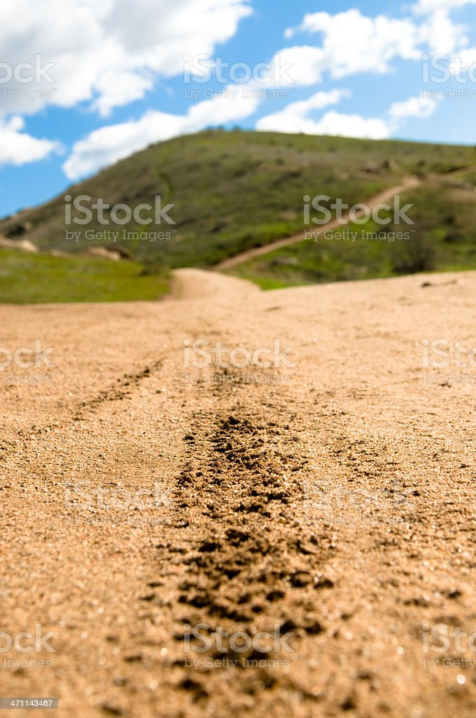 Mountain Bike Tire Tracks royalty-free stock photo