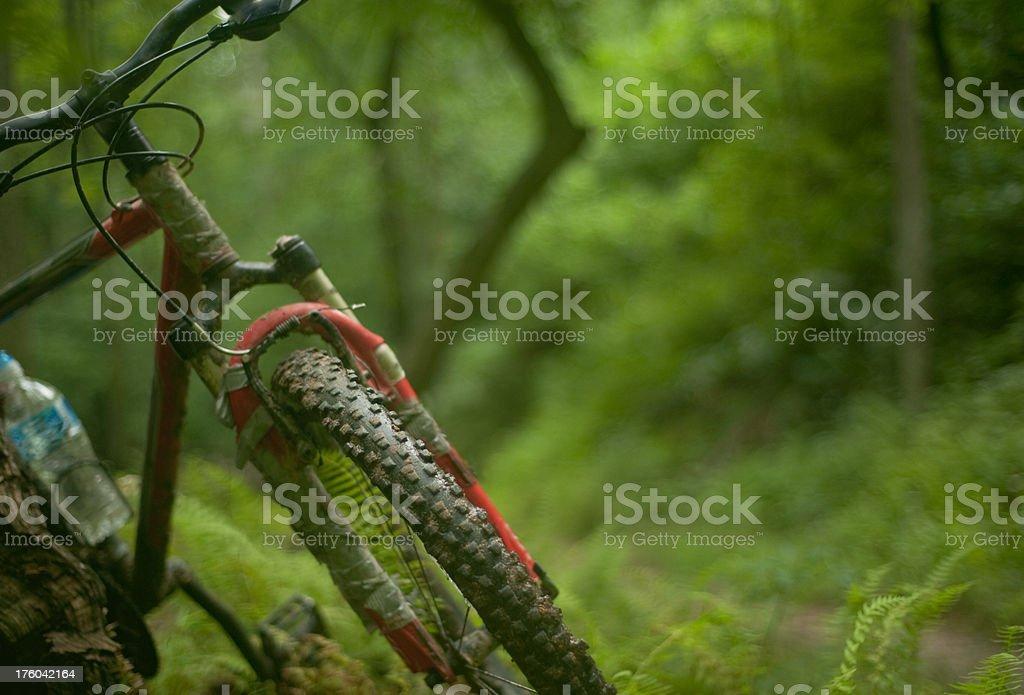 Mountain Bike Trail royalty-free stock photo