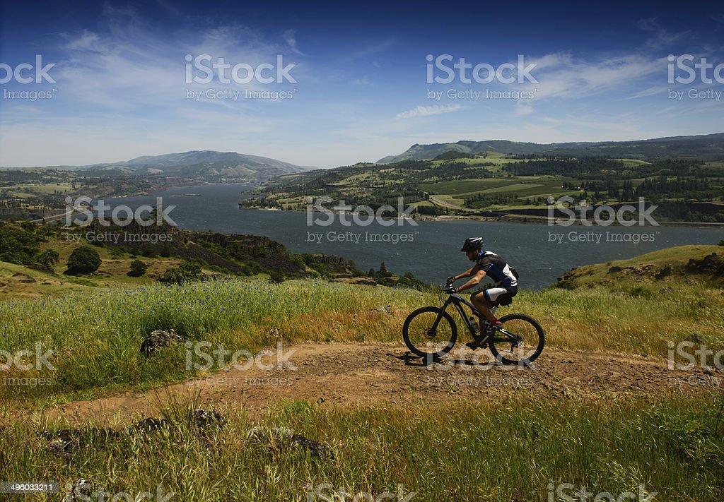 Mountain Biker at Columbia River stock photo