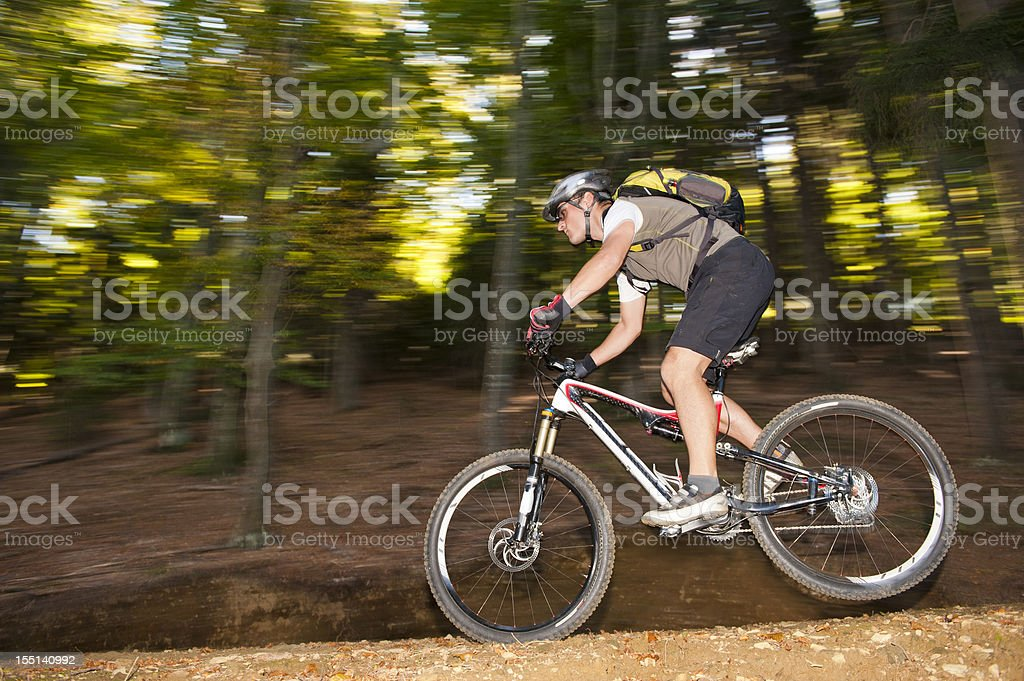 Mountain biker at downhill royalty-free stock photo