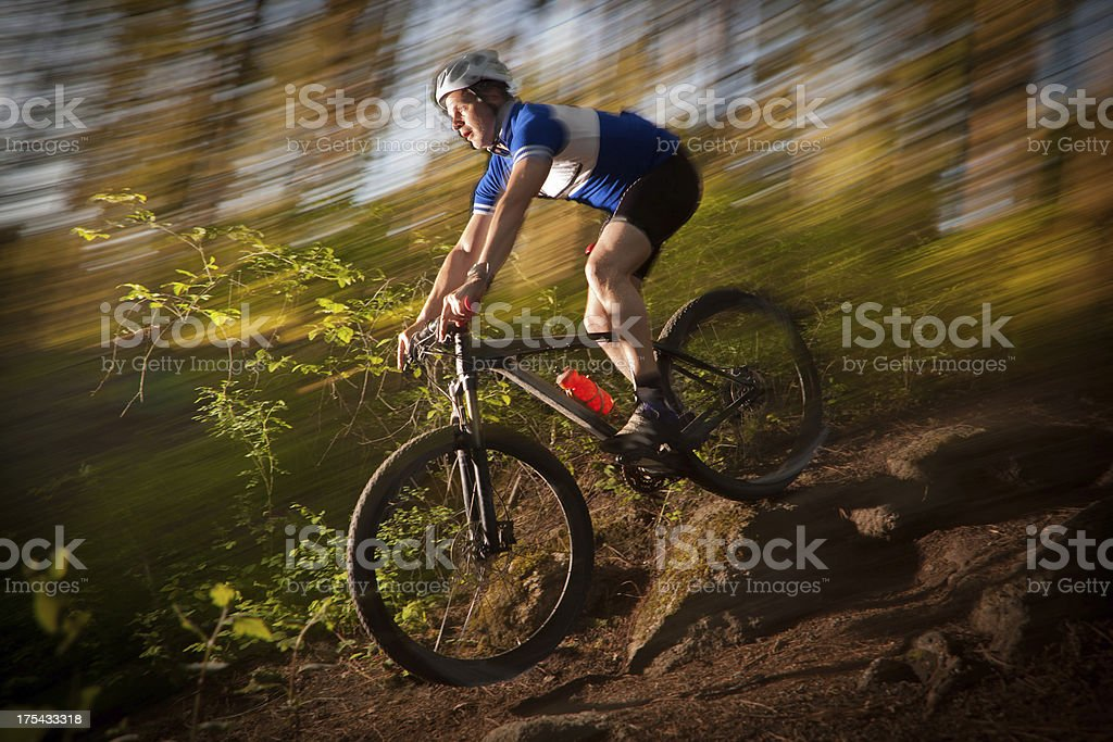 Mountain biker descending a trail at sunset royalty-free stock photo