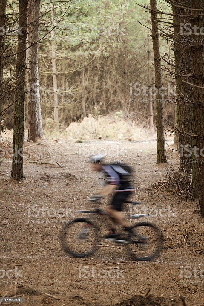 Mountain Biker in Forest royalty-free stock photo