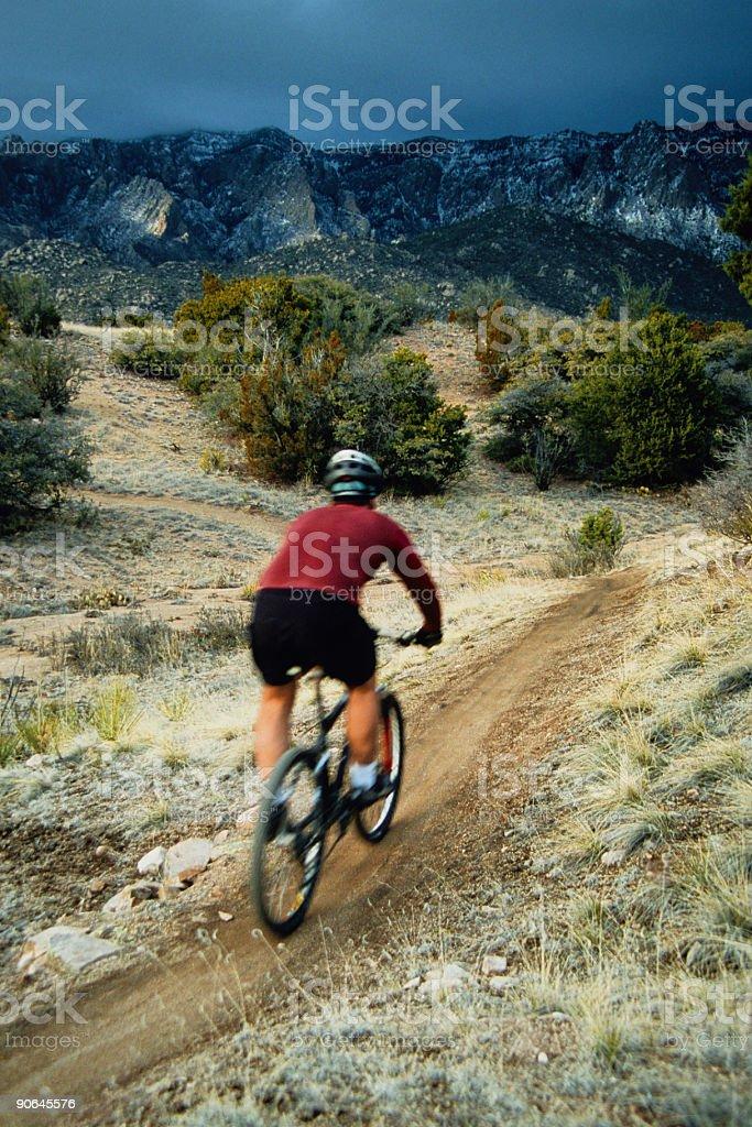 mountain biker in motion royalty-free stock photo