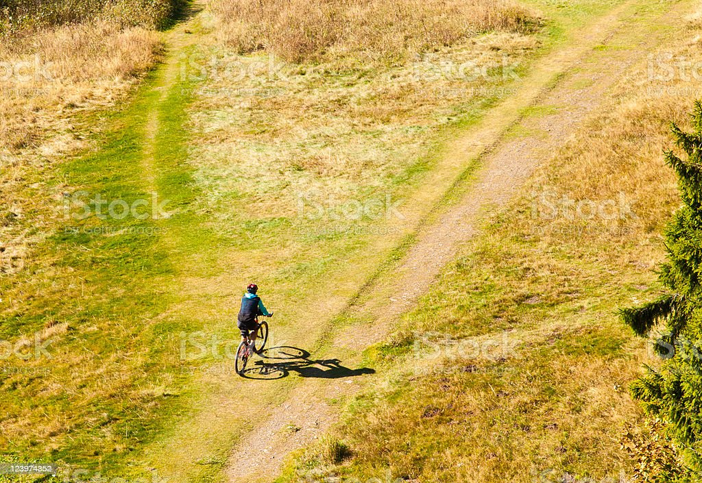 Mountain Biker Off-Road royalty-free stock photo