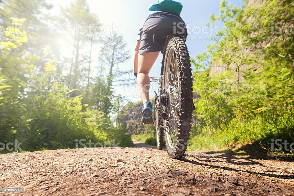 Mountain biker on a forest trail stock photo
