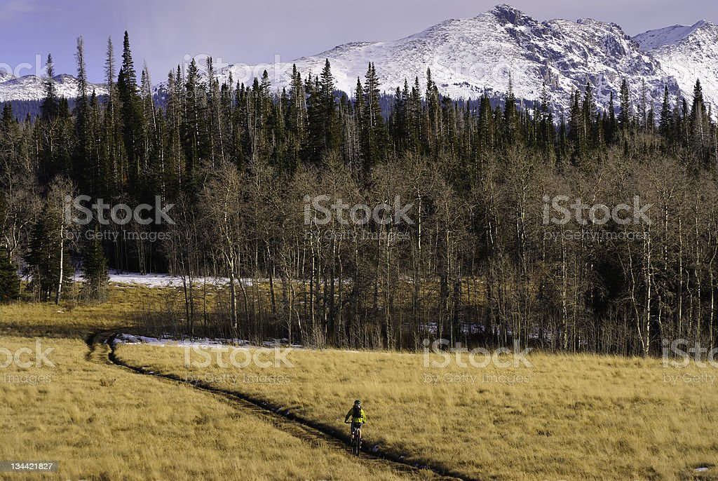 Mountain Biker on Double Track Road in Scenic Location royalty-free stock photo