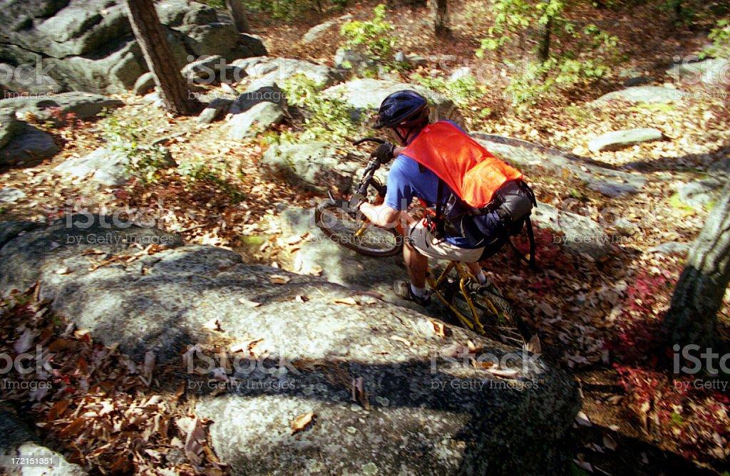 Mountain Biker Overhead royalty-free stock photo