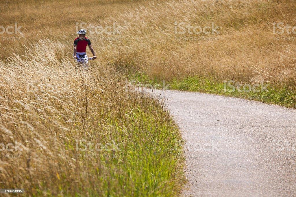 Mountain biker royalty-free stock photo
